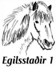 Islandpferde-Farm Egilsstaðir 1